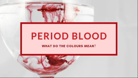 which colour blood do you shed during menstruation
